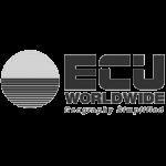 espace-properties-corp_clients-logo_gray_ecu-worldwide-geography-simplified-logo